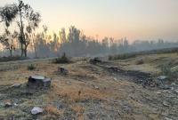 At Harwan, A Grid Station Eats Up Protected Fruit Bearing Trees