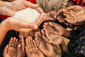 Coronavirus Has Worsened Global Hunger Crisis: UN Report