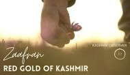 Zaafran – Red Gold of Kashmir
