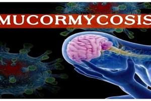 DAK Sounds Alert Over Black Fungus In Covid Patients