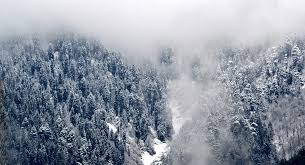 Snowfall in upper reaches
