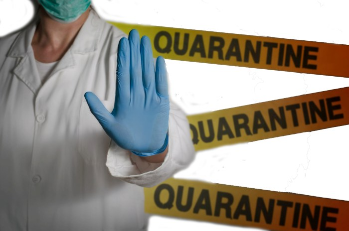 Nearly 23 lakh people in quarantine across India: Govt estimates