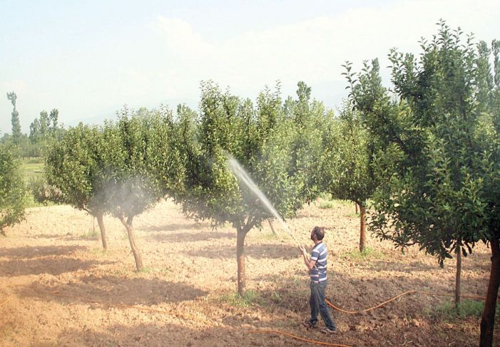 Quick reports, local laboratories needed to disinfect Kashmir of spurious pesticides