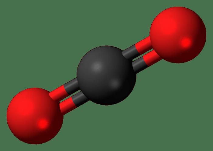 Carbon Dioxide: Destroyer of Species