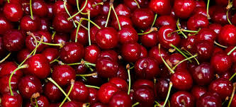 Cherry crop ready, but lockdown big worry