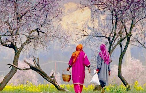 A Degraded Kashmiriyat