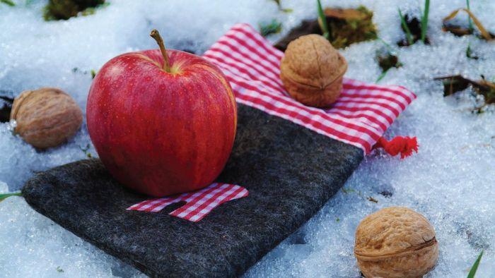 Big official plan for high-density apples, walnuts in Kashmir