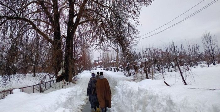1-2 feet of snowfall in Shopian