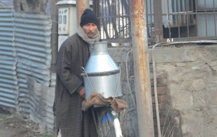 With no quality checks or fixed rates, middlemen milk all the profit in Shopian