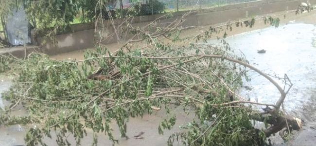 Three killed as rains, fresh snowfall wreck havoc across Valley