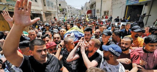 Gaza attack: 83 dead, over 480 wounded, says health ministry
