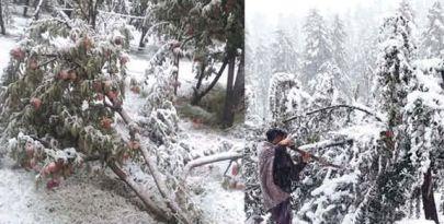 Three dead as Valley receives seasons first snowfall