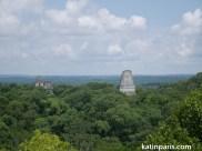 Tikal. Ten krajobraz zagrał w Gwiezdnych Wojnach.