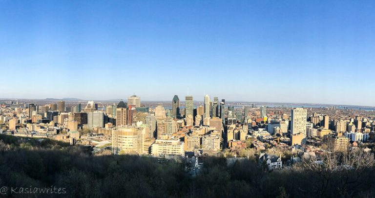 mount royal has the best views that will make you fall in love with Montral