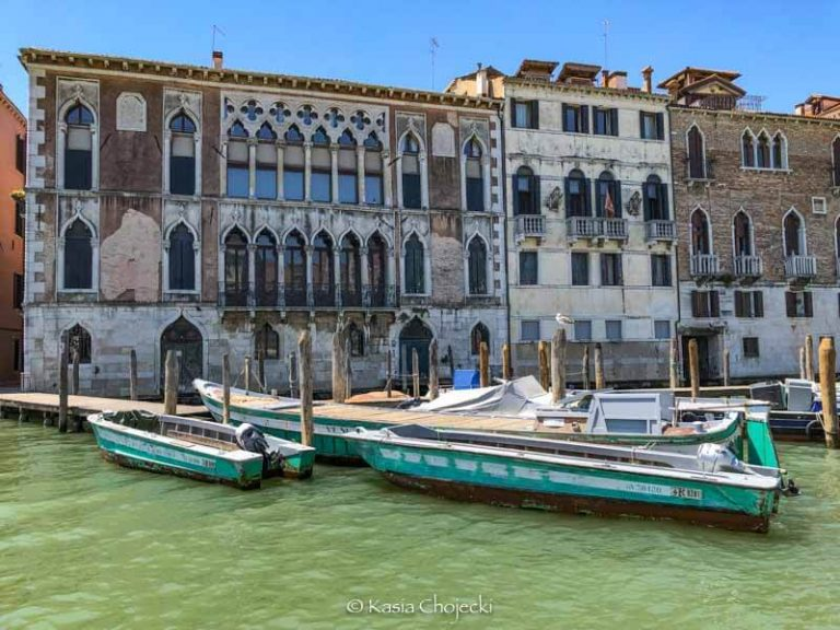 ornate houses lining the grand canal in Venice
