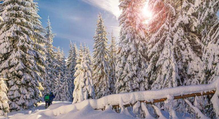 10 Fun outdoor winter activities for staying active