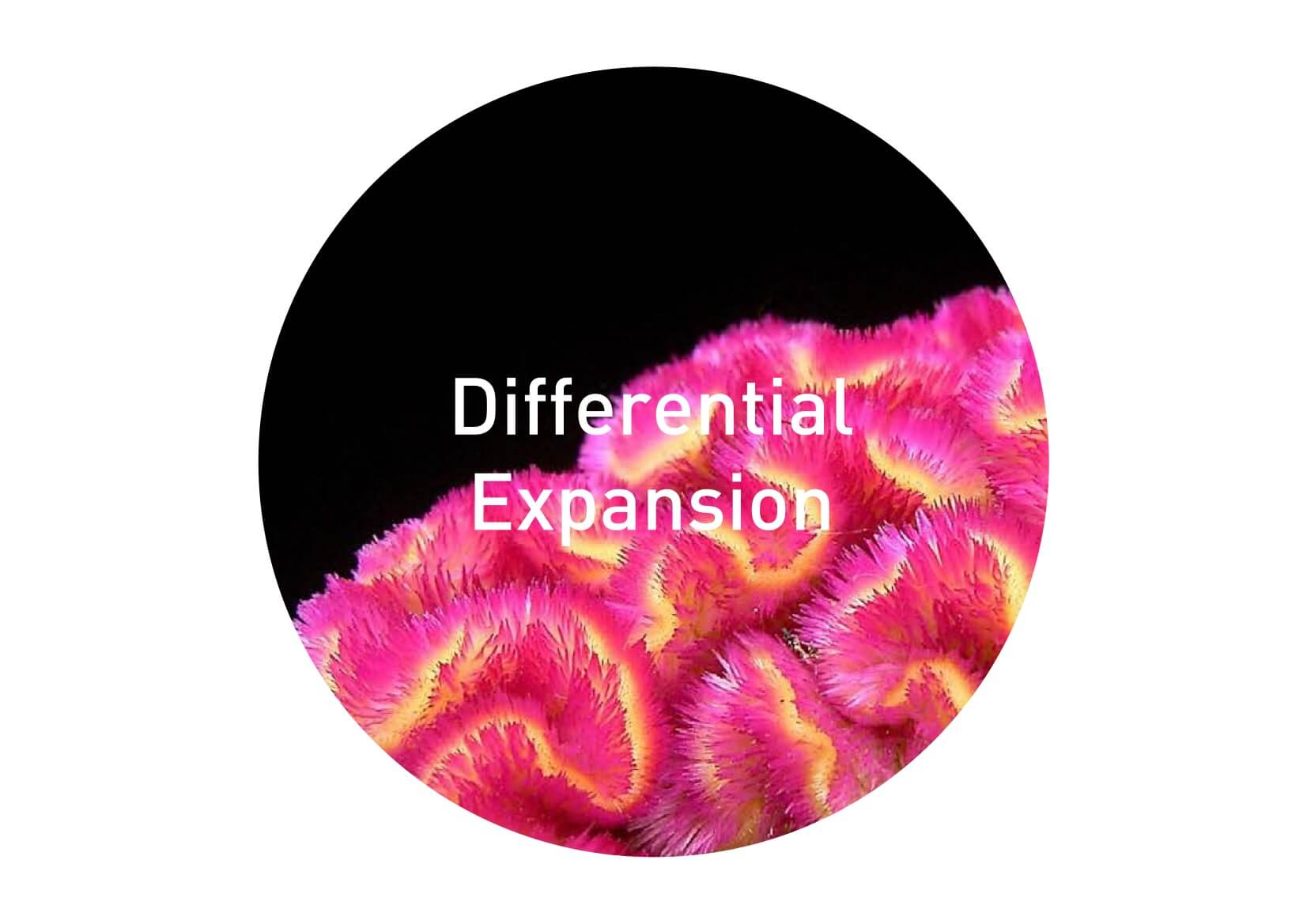 Differential Expansion