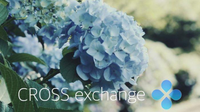 CrossExchange、7/3の日報  IEO!IEO!