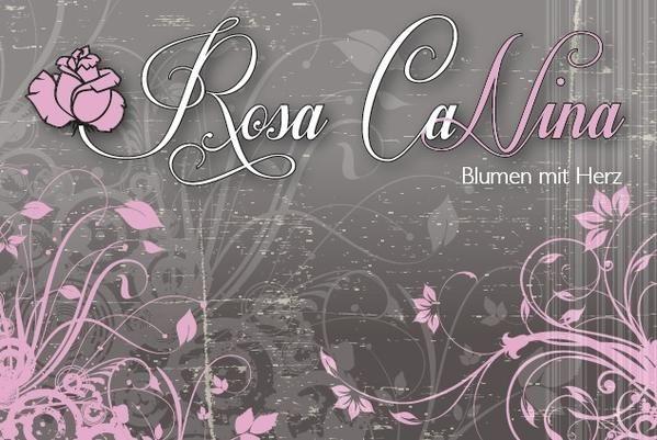 Rosacanina Blumen mit Herz