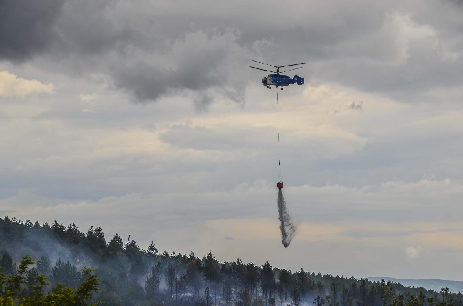 Kastamonu'da ormanlık alanda yangın çıktı