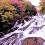 竜頭ノ滝紅葉