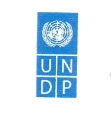 16 UNDP