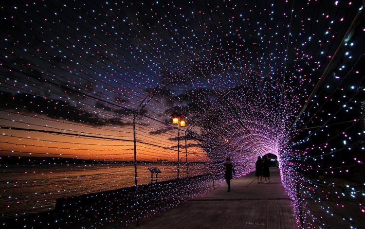 週末好去處 | 淡水海關碼頭 粉紅浪漫燈海隧道