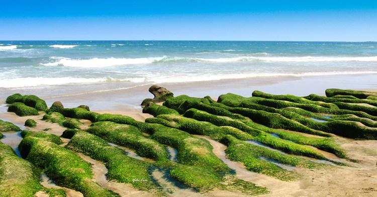 週末好去處 | 春天的新綠 老梅-綠石槽