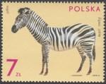 Zwierzęta ogrodów zoologicznych - 2023