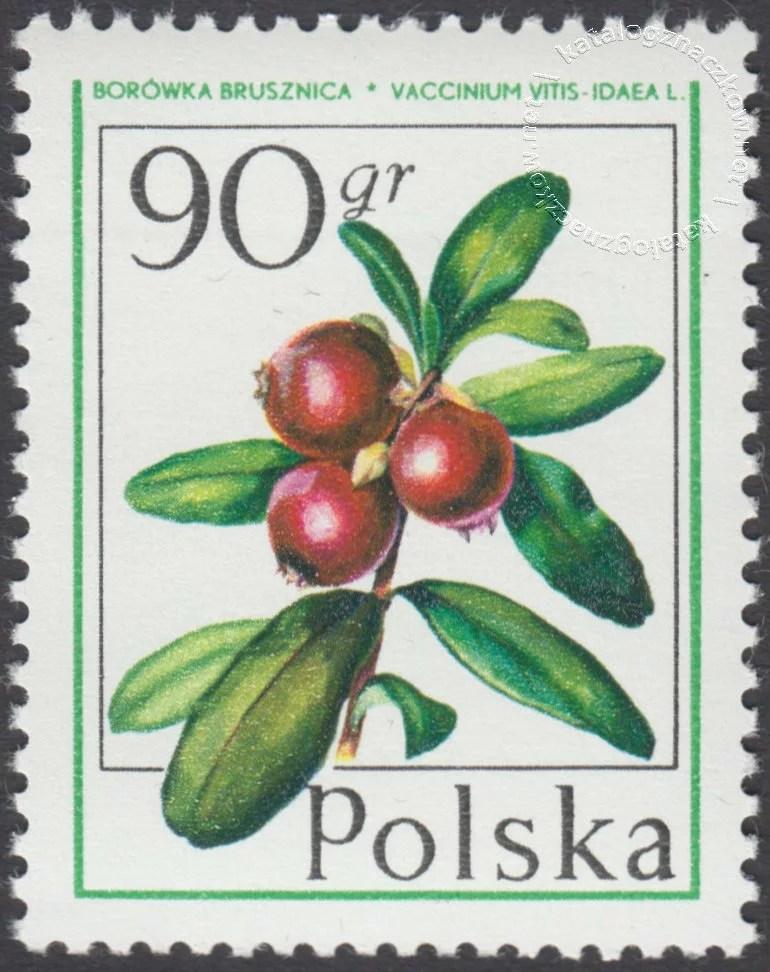 Owoce leśne znaczek nr 2341