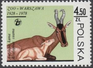 50 lecie warszawskiego ZOO - 2442