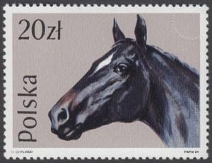 Konie - 3044