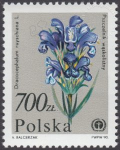 Rośliny ginące w Polsce - 3135