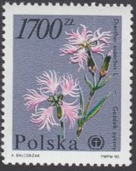 Rośliny ginące w Polsce - 3139