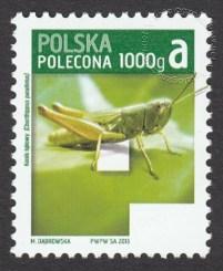 Znaczek obiegowy priorytetowy - 1000 g A - P - znaczek nr 4488