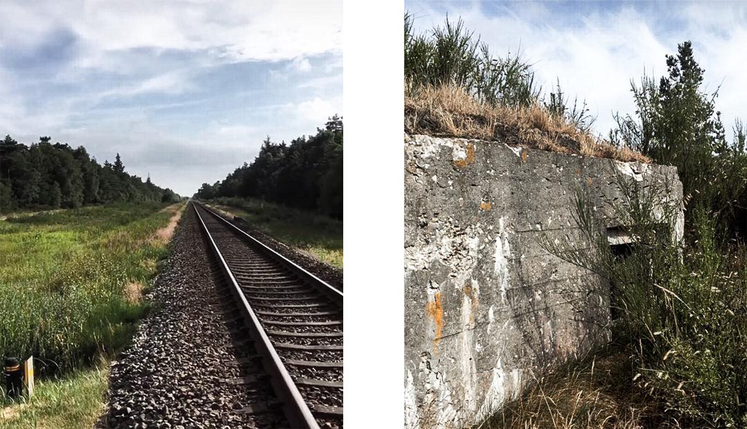 Bunken Klitplantage - Guide: 4 dage i Nordjylland