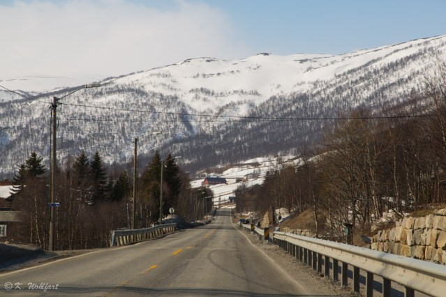 roadtrip bergen norway-14