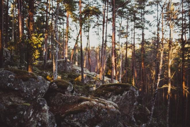 tivedens_nationalpark-19