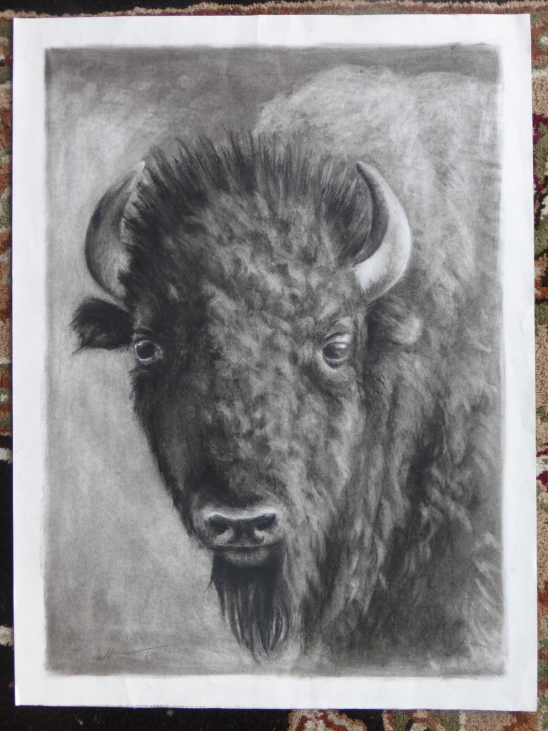 Charcoal Buffalo by Katherine Augade