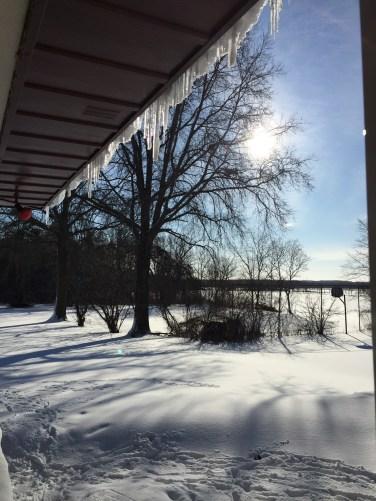 sunshine over the yard
