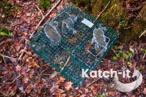multi catch squirrel trap