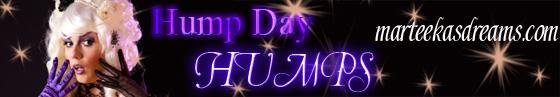 hump-day-banner-2