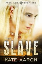 TheSlave-200x300 Flash Sale!