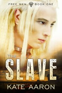 TheSlave-200x300 LGBT Bestseller THE SLAVE is Free!