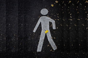 man crosswalk leaf