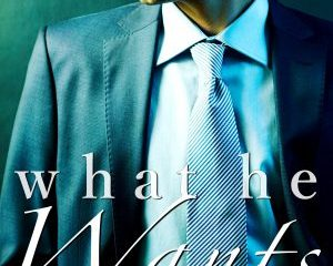 what he wants kate aaron second edition