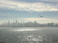 San Francisco (view from Alcatraz)