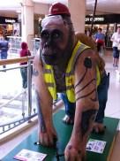 Go Go Gorilla Drilla the Gorilla, Norwich