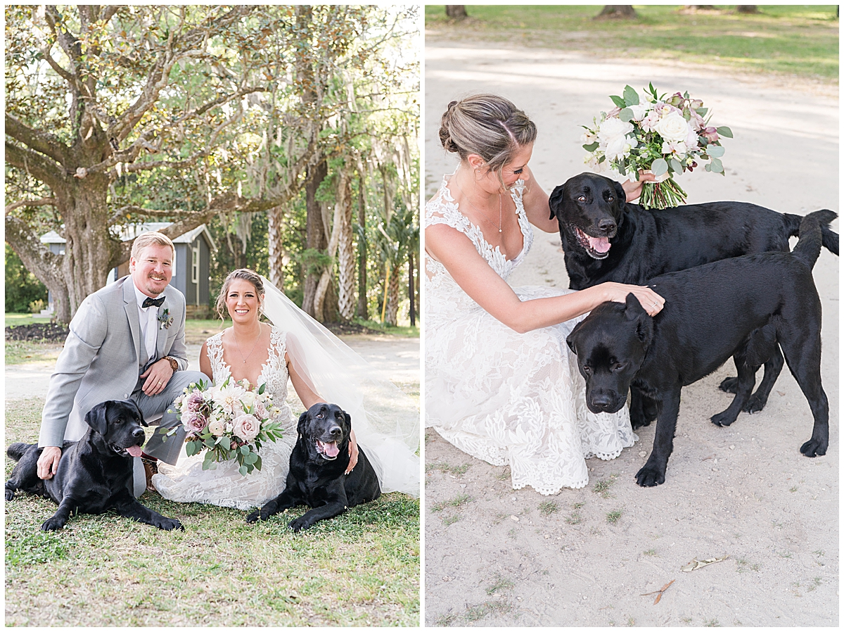 bride and groom pose with dogs after Runnymeade Plantation Charleston wedding