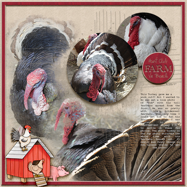 AmyDigital scrapbook layout created with the FREE digital scrapbooking template from Kate Hadfield Designs! | layout by CT member Christa
